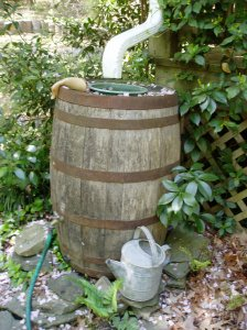 one of my Jack Daniels  barrels...