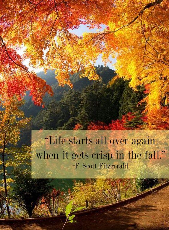 life-fall