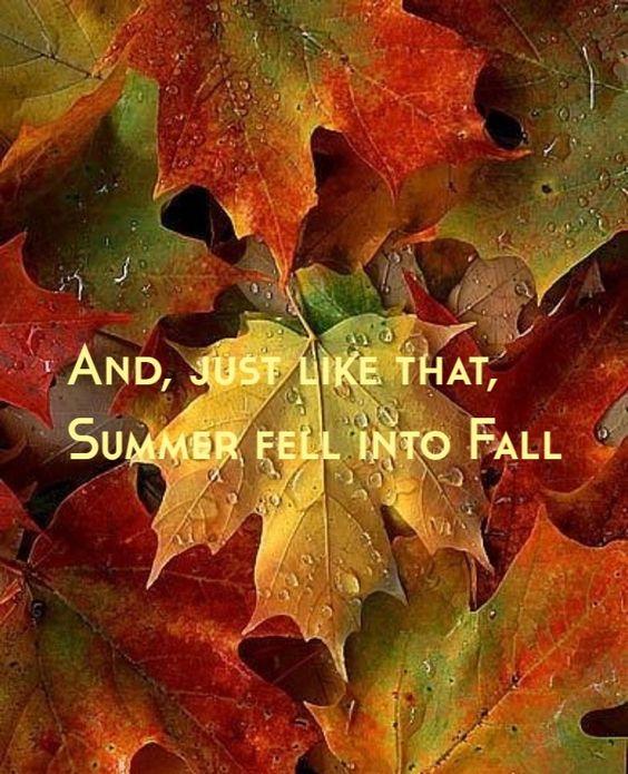 summer-fell